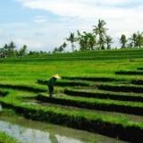 The magical island of Bali | My Cosy Retreat