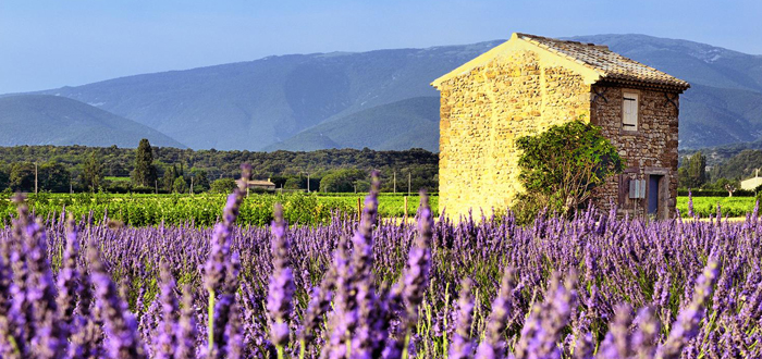 The colors of Provence