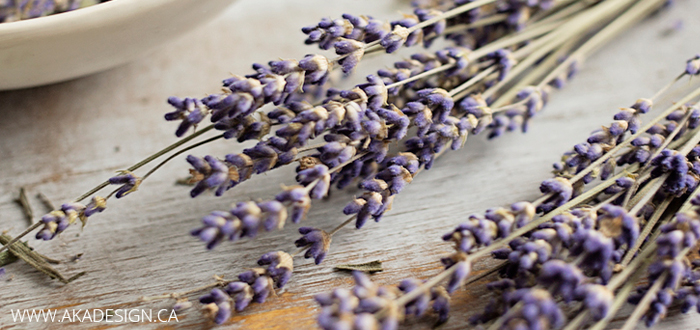Summer inspiration: the lovely scent of lavender