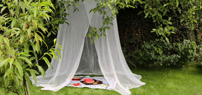 A wonderful Sunday backyard picnic | My Cosy Retreat